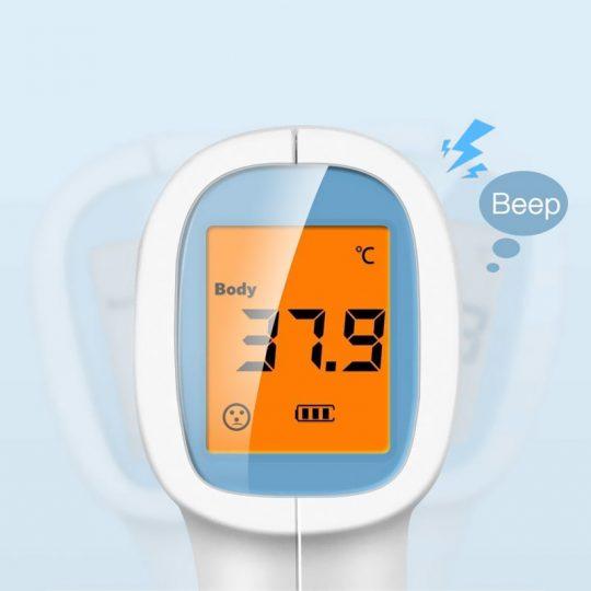 ecran LCD thermometre